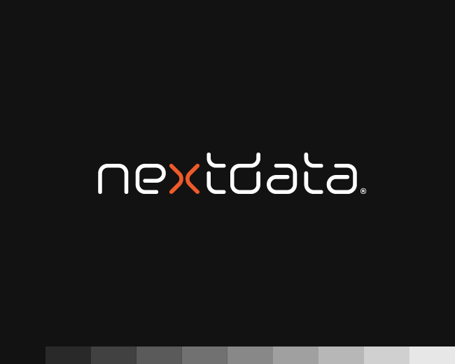 Nextdata / IT industry