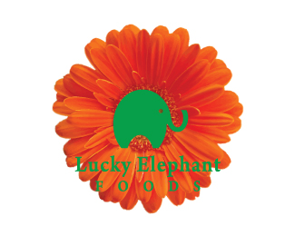 Lucky Elephant Foods
