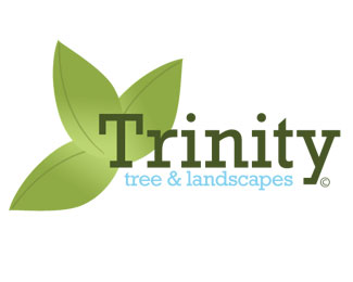 Trinity Tree and Landscapes