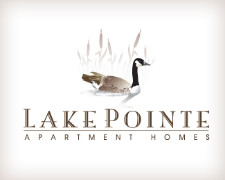 Lake Pointe Apartment Homes