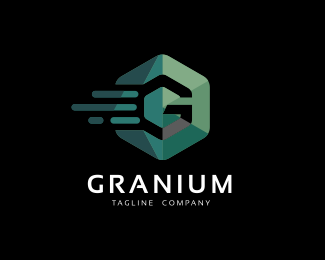 Granium - Hexagon Logo Template