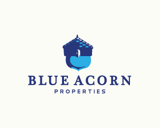 Blue Acorn Properties