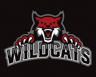 Wildcats + Wordmark