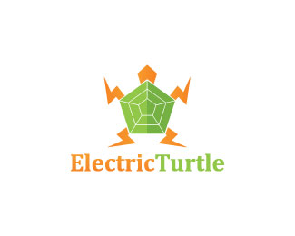 Electric Turtle