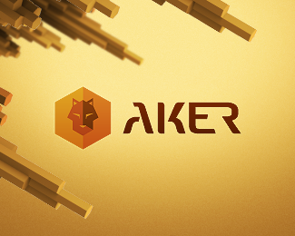 Aker • Security Solutions