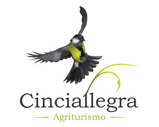 Cinciallegra