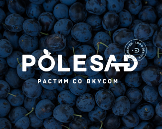 POLESAD by ©Edoudesign