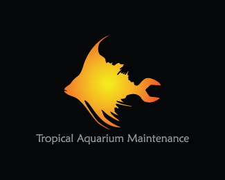 Tropical Aquarium Maintenance
