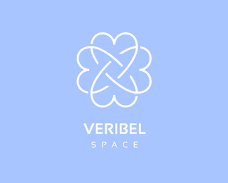 Veribel Space