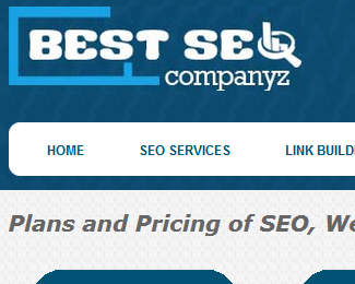 Bestseocompanyz : Creating Valuable Link Juices
