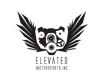 Elevated Motorsports
