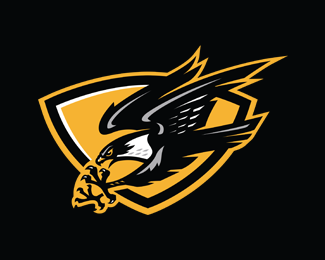 Eiker Falcons Hockey