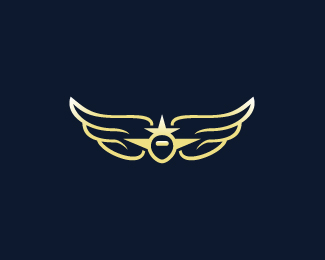 Wings Aviation