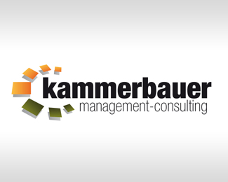 kammerbauer management consulting