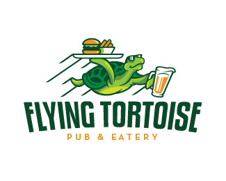 Flying Tortoise