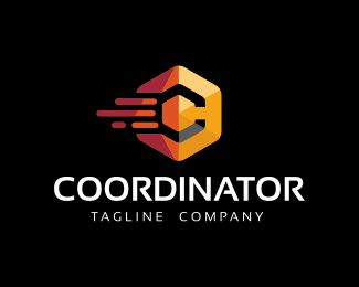 Coordinator-Hexagon Logo Template