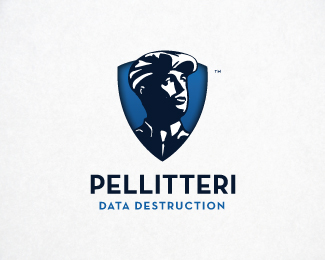 Pellitteri Data Destruction