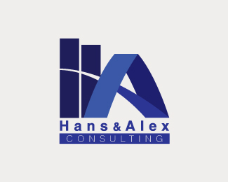 Hans & Alex consulting