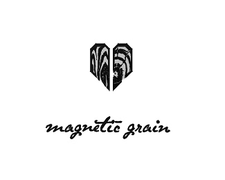 Magnetic_Grain