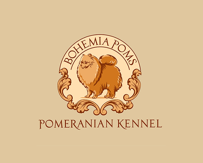 Kennel Pomeranian