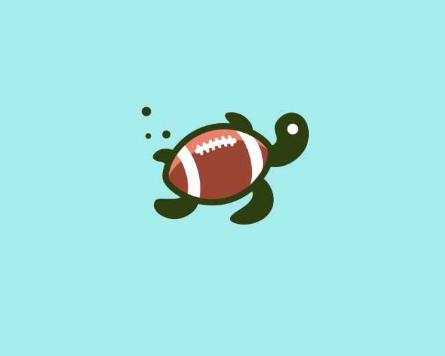 Turtle ball