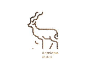 30 Days With Animals / Antelope KUDU