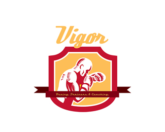Vigor Boxing Training and Coaching Logo