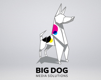 Big Dog Media Solutions