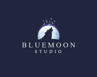 BlueMoon Studio