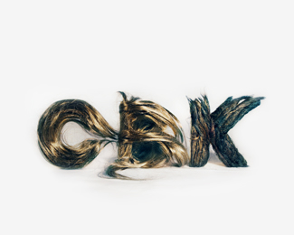 Hair Logo of Chickenbrainken
