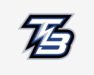 Tampa Bay Lightning Concept Logo