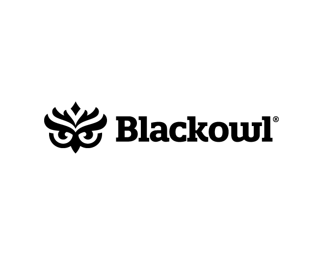 BlackOwl Media Group