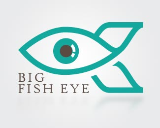 Big fish eye