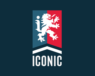 ICONIC Design Co.
