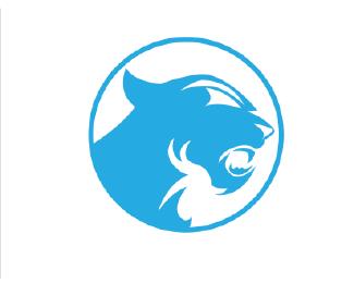 the panthers logo challenge page 2 carolina panthers news and