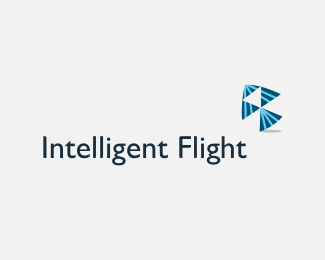 Intelligent Flight