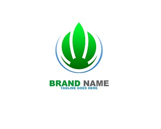 Green Fire Logo Template