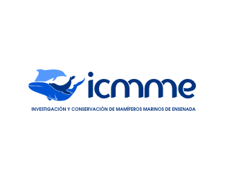 ICMME A.C.
