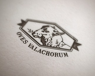 Oves Valachorum logo and stationery design