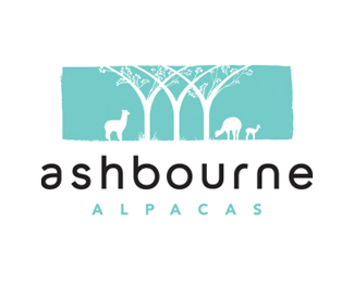 Ashbourne Alpacas