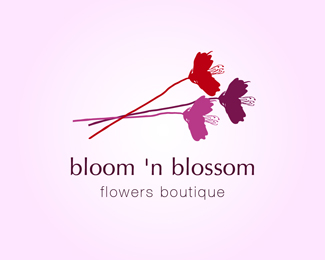 bloom 'n blossom