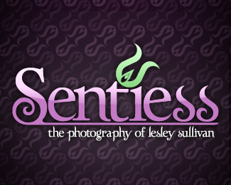 Sentiess: The Photography of Lesley Sullivan