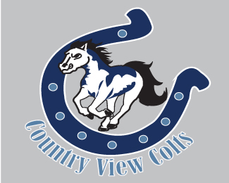 Country View Colts Elementary