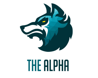 Kevin CG - The Alpha - Project 2