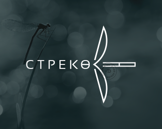 СТРЕКОЗА (RU) dragonfly by ©Edoudesign