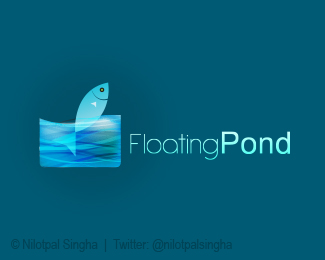 Floating Pond