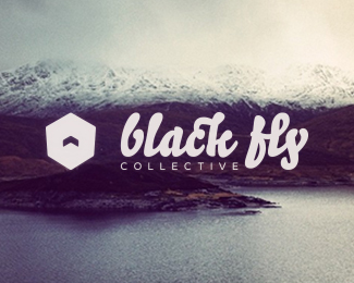 Black Fly Collective logo