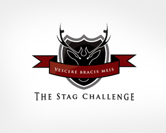 The Stag Challenge