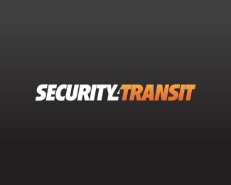 Security 4 Transit (Concept 1)