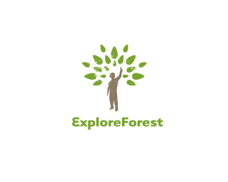Explore Forest
